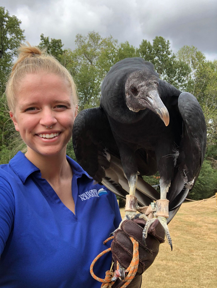 Lindsey Day - Falconry 3.jpg