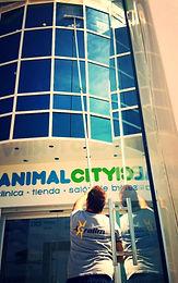Limpieza de cristales en Málaga