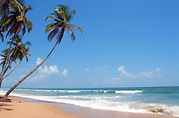 Goa-India.jpg