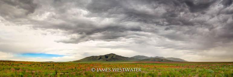 Desert Strom, Jericho Utah area