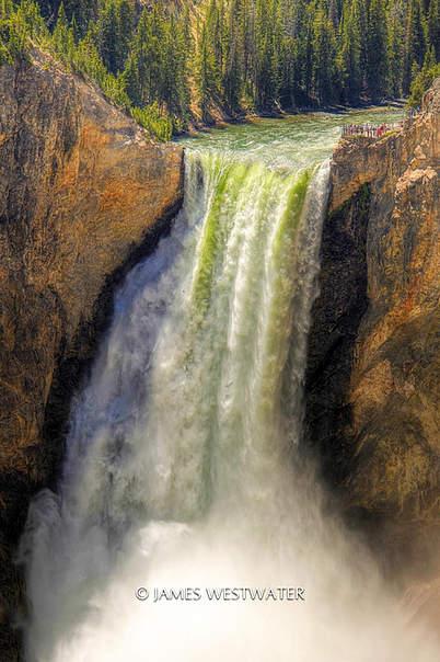 308 Feet of Thunder, Lower Yellowstone Falls, Yellowstone National Park, Wyoming