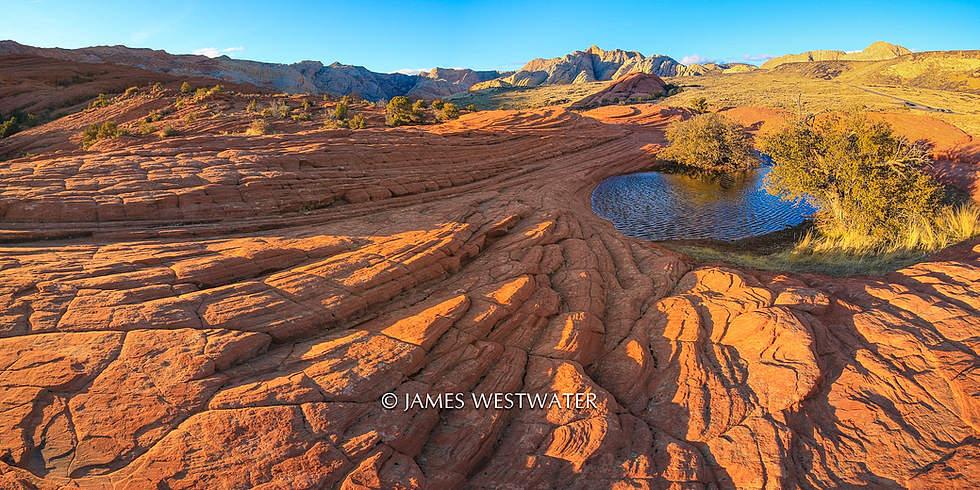 Dune Shadows, Snow Canyon State Park, Utah