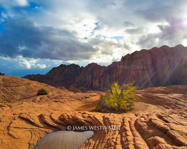 Island of Life, Snow Canyon State Park, Utah