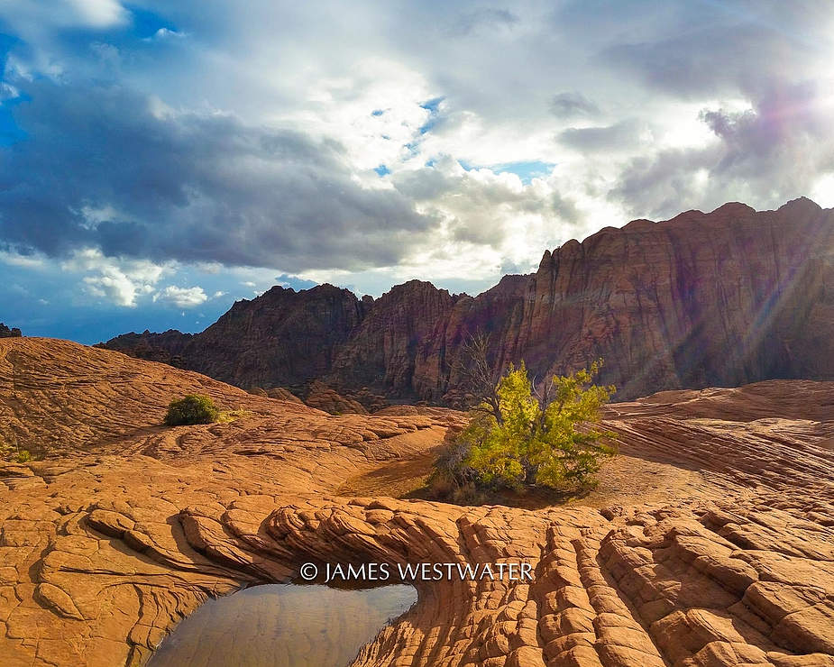 Island of Life, Snow Canyon State Park, Utah