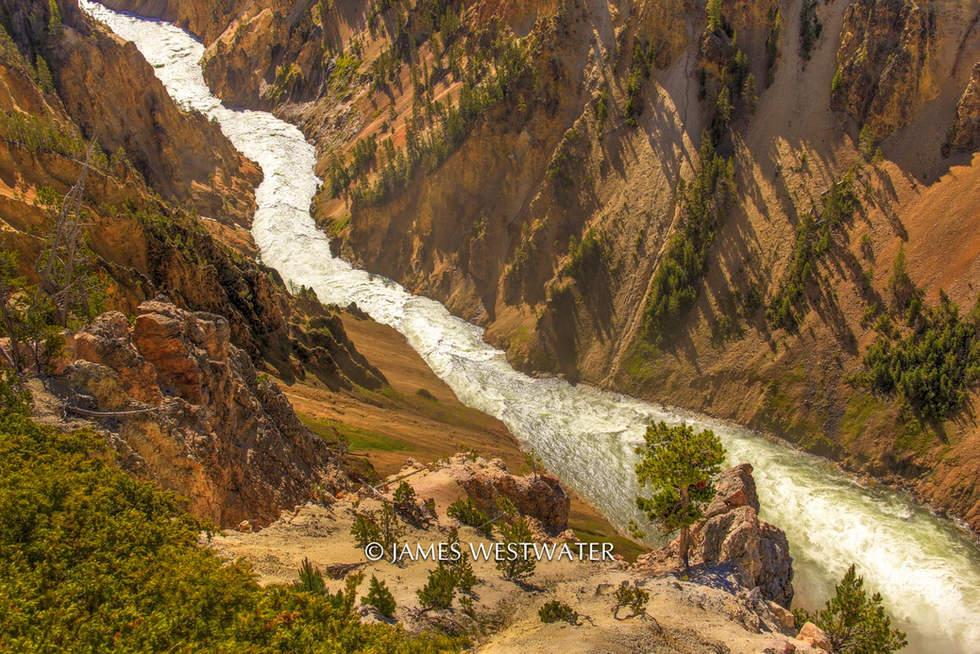 A River Runs Through It, Yellowstone Canyon, Yellowstone National Park, Wyoming