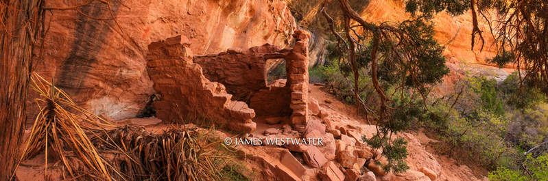 Native Site, Natural Bridges National Monument, Utah