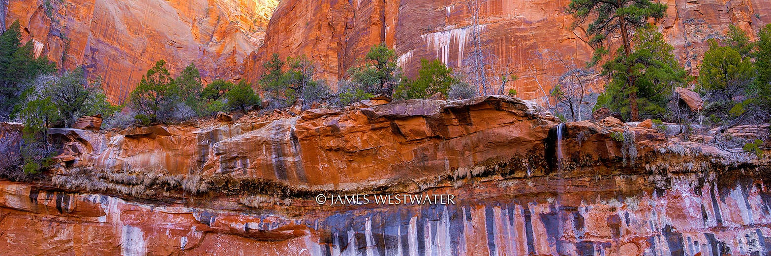 Painted Rock, Emerald Pools, Zion National Park, Utah