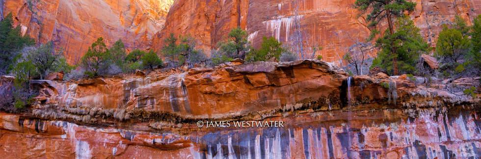 Painted Rock, Emerald Pools, Zion National Park, Utah
