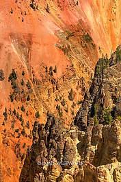 Yellowstone Canyon, Yellowstone National Park, Wyoming