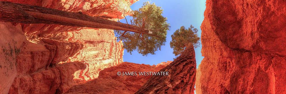 Navajo Trail, Bryce Canyon National Park, Utah