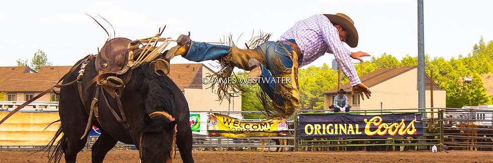Flying Home, Rodeo Cowboy, Arizona
