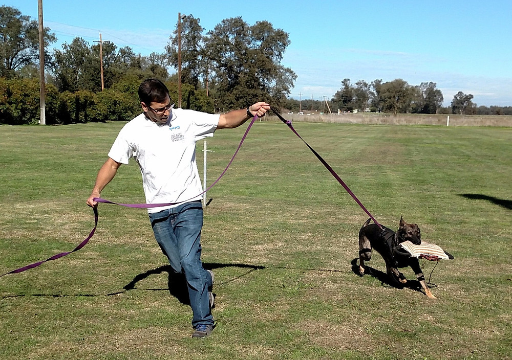 "Jeff Waybright ""circling"" with Ginna's dog 'Calligator'. Photo: Carissa Kuehn."