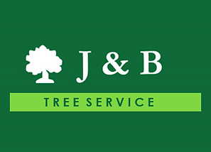 Contact Tree Removal Service Adelaide   J and B Tree Service