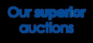 WEB auctions.png