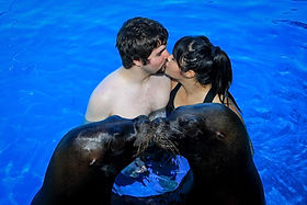 Jade & Graydon J. Honeymoon in Puerto Vallarta