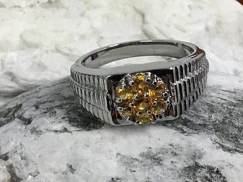 Serra Gaucha Citrine Men's Ring.  Size 12.  CTW 0.76