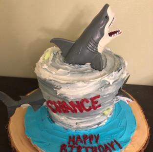 Sharknado Cake_edited.jpg