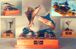N.O.I.B.T trophies