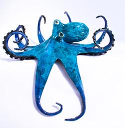 Dangler Octopus