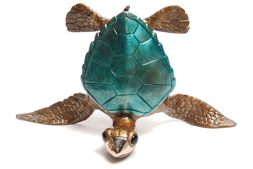 Show Off, bronze turtle