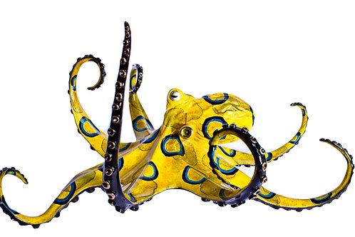 Creeper, bronze octopus