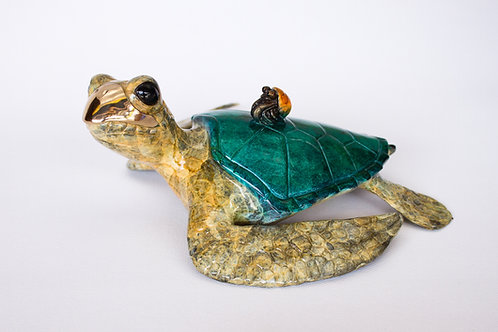 Sidekick, bronze turtle