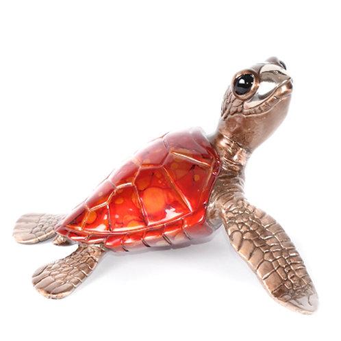 Honu, bronze sea turtle