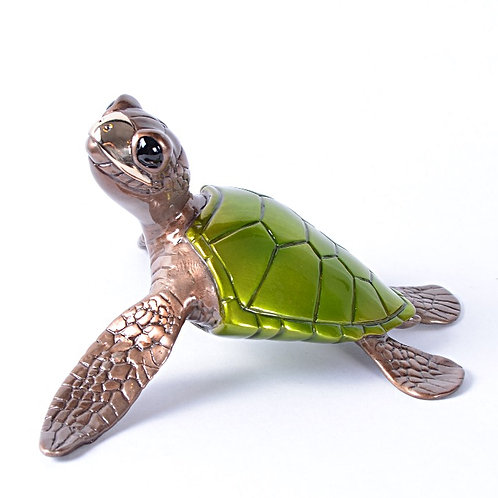 Speedy, Bronze Turtle