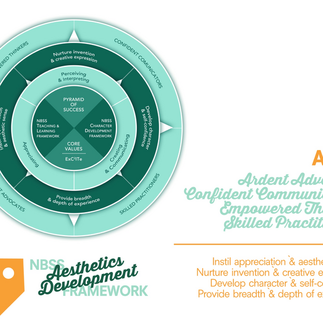 NBSS Aesthetic Development Framework