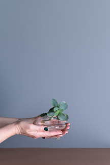 sten| pebble vase