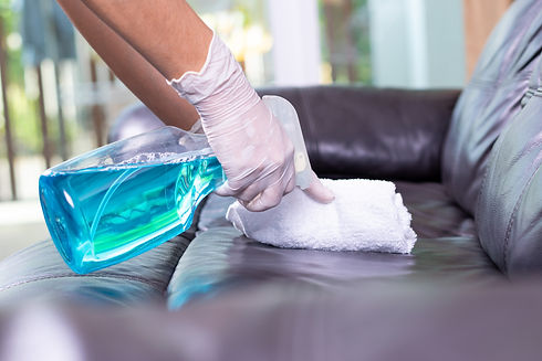 cleaning-leather-sofa-home-protective-co