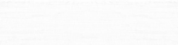 דף 2 רקע לבן.png