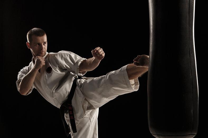 karate-round-kick-punching-bag.jpg
