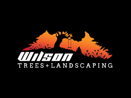 Wilson trees and landscaping logo.jpg
