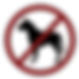 no-dog-icon.png