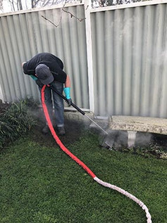 Steam_weed_removal_small.jpg