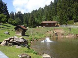 nvv-reise-2011-sauschwaenzlebahn-020_lbb