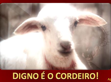 DIGNO É O CORDEIRO!