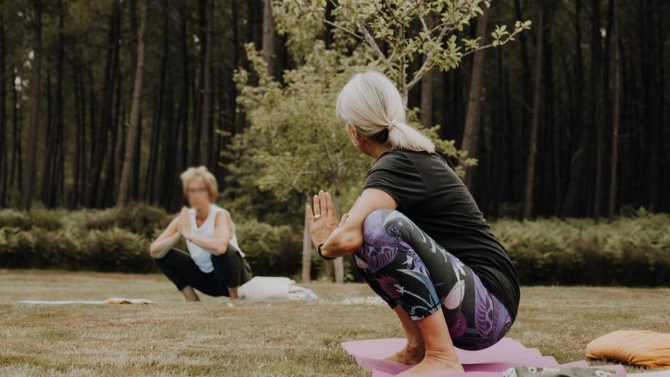 Reprise des cours en visio Yin yoga - Jeudi 16 septembre 2021