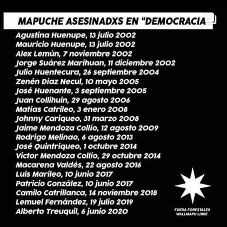 Racismo y violencia estructural contra la Nación Mapuche en el Wallmapu