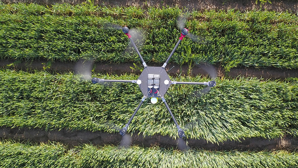 15L_fumigation_drone_spraying_030.jpg