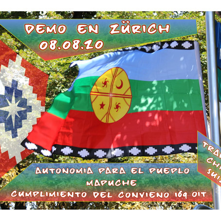 Acto en Solidaridad al Pueblo Mapuche (Español/English/Deutsch)
