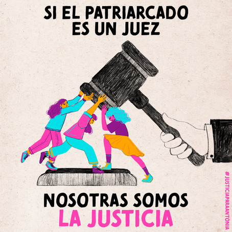 Proporcionalidad de la justicia en Chile: Los casos de Antonia Barra y Roberto Campos