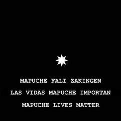 las vidas mapuche importan