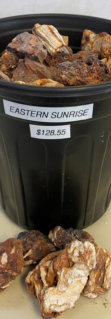 Eastern Sunrise - Timberlite
