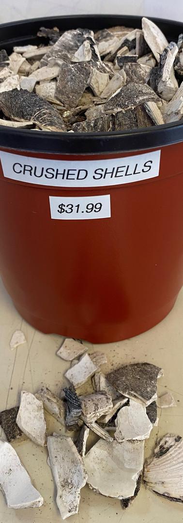 Crushed Shells