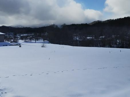 冬の音と冬の色