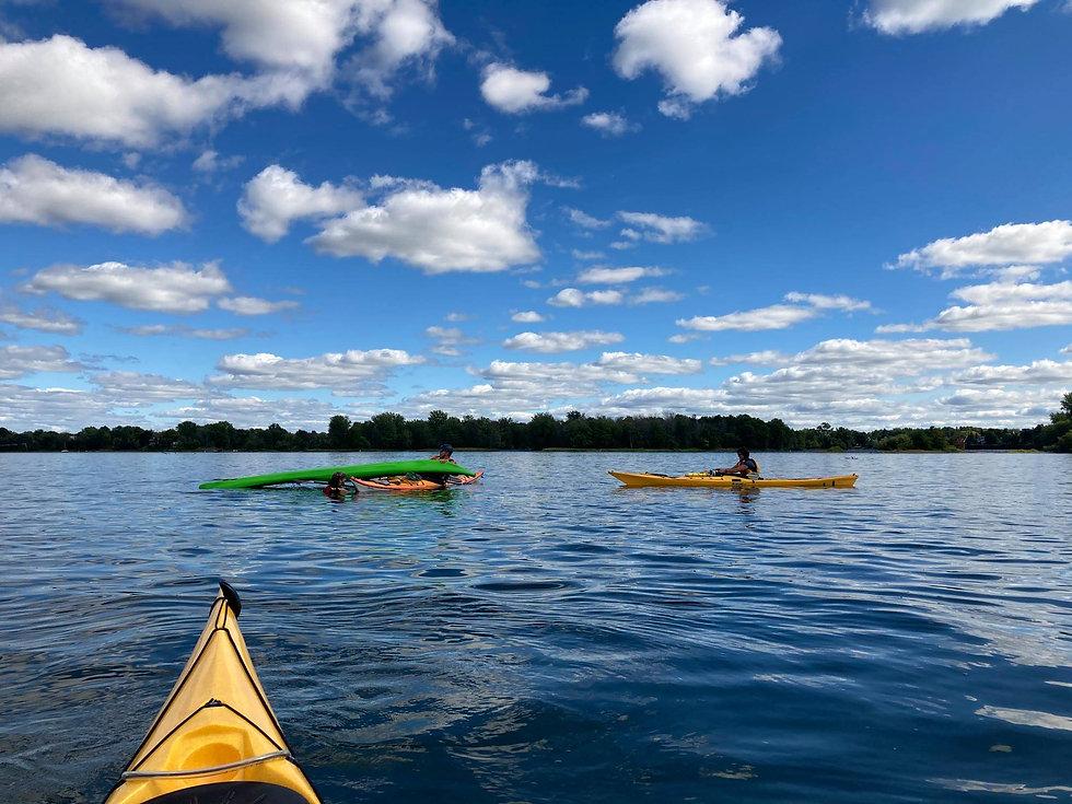 rorqual kayak.jpeg