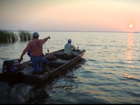 Out Da Bayou: Gator Hunting