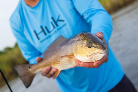 Huk Redfish.jpg